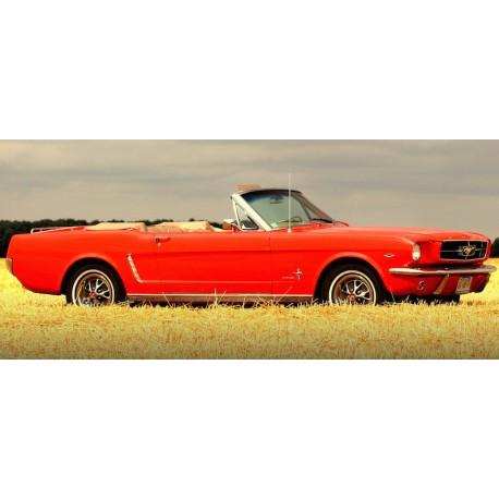 """Stage de conduite  """"20 Minutes Au Volant d'une Ford Mustang 1965"""""""