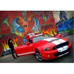 """Stage de conduite  """"20 Minutes Au Volant d'une Ford Mustang GT 500"""""""